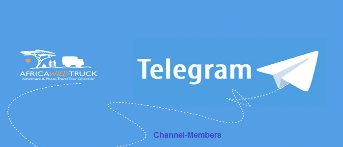 Channel Members - buy telegram channel members